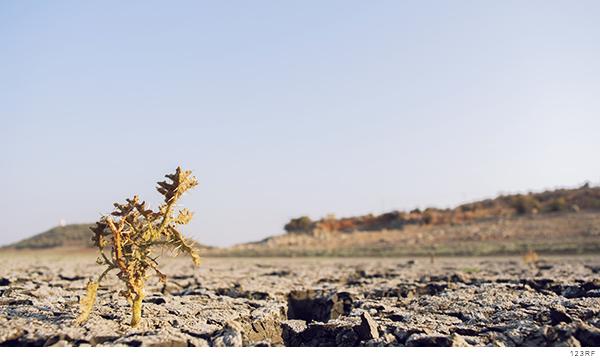 Imagen arido por falta de agua en territorio indigena